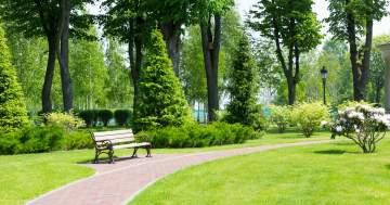 Création et aménagement de parc & patio sur Plaisance-de-Touch