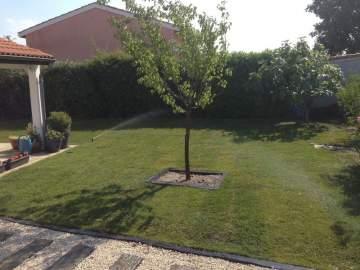 Création d'un jardin unique par votre paysagiste de Plaisance-du-Touch